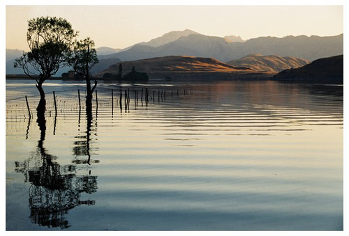 Lake Wanaka Reflection Sun Rise