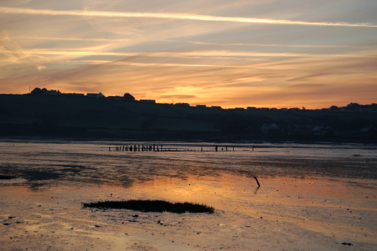 dawn appledore devon