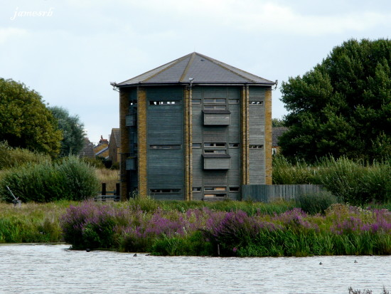 barnes wetlands watchtower