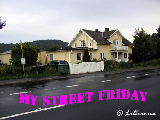 MYSTREETFRIDAY street house architecture lillianna