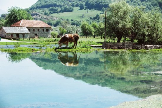 montenegro plav reflection