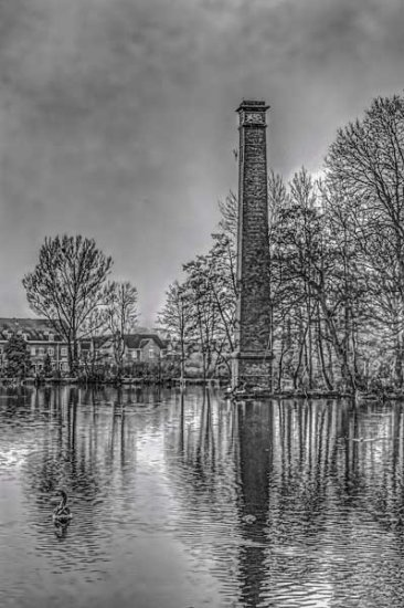 bw Black and White Flowers HDR Kidderminster lake pond pool sky stack
