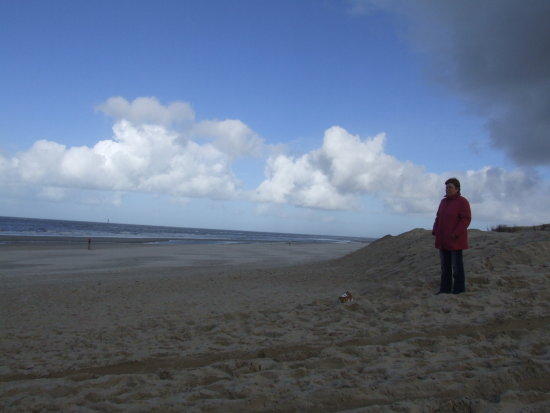 short brake texel beach