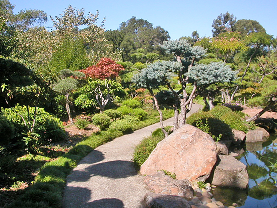 visiting the Japanese Garden in Hayward, California --- #8 of 10 The ...