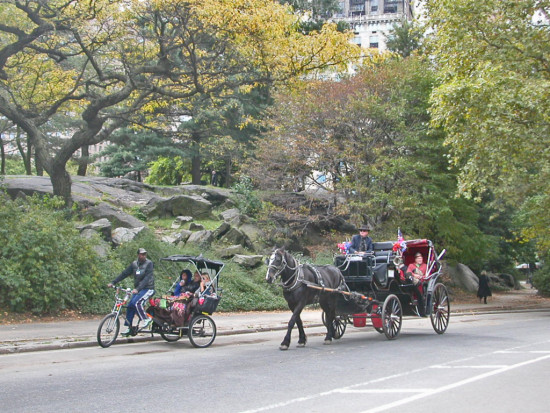 centralpark newyorkcity park autumn horse carriage nyc2011fph