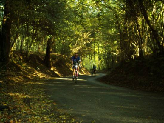 Tim Hall climbs Cob Lane on the Mid Sussex Hilly audax 15.10.05
