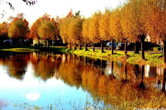 Autumn nature reflection