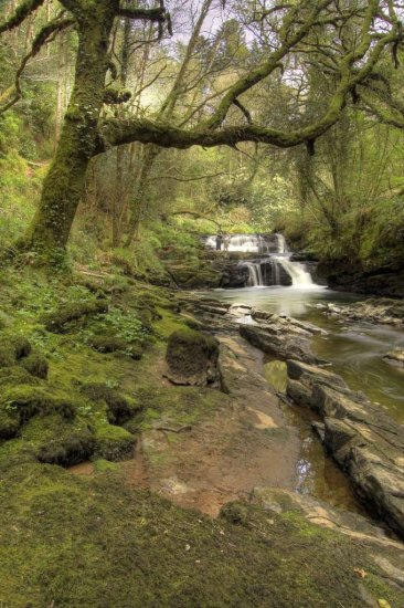 Clare Glens Tipperary Landscape Ireland Green River Waterfall