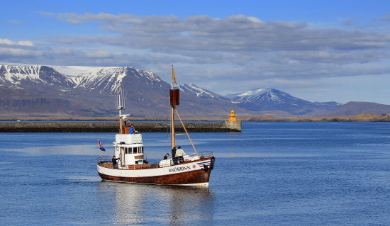 Boat in Reykjavik planning for the big 15 ship horns music - You can see the video of the sound ...