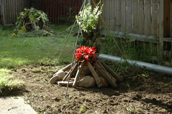 Camp fire flower garden logs heat hot