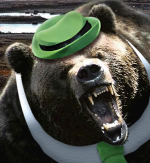 the bear wearing hat