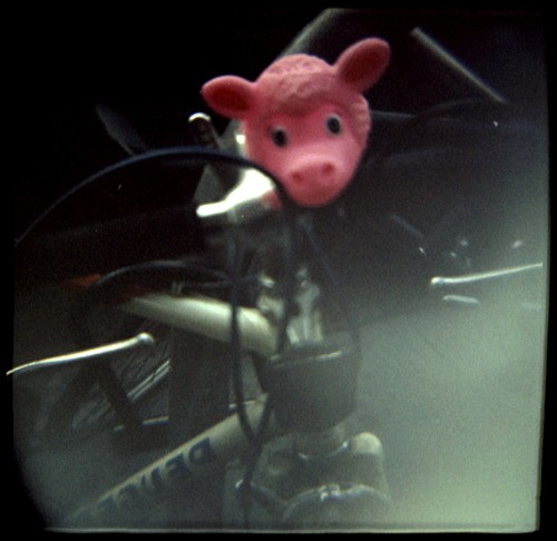 lamb holga 400nc 120 bike pink scared
