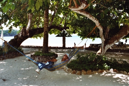 ... and couples of hammocks hang under the trees near the beach and on the park ready to comfort ...