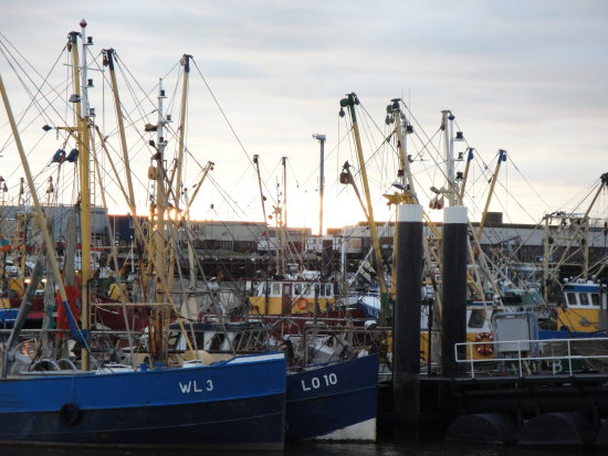 Lauwersoog Holland fishing boats ships