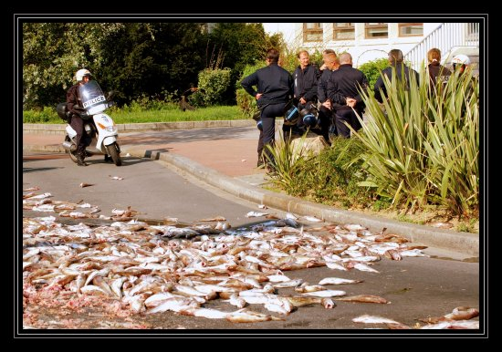 France Police Academy Fishes Mess Road