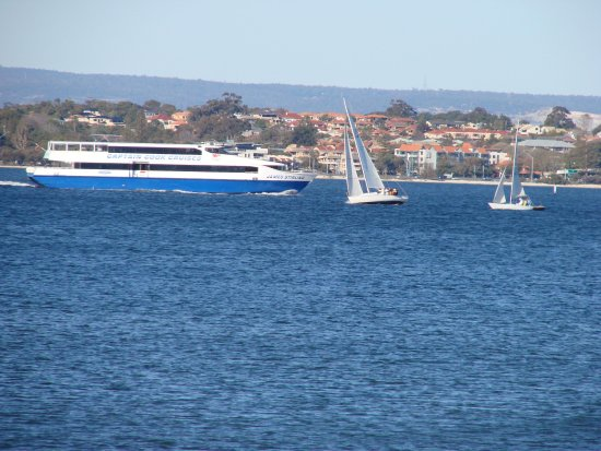 ferry collide yachts swan river littleollie