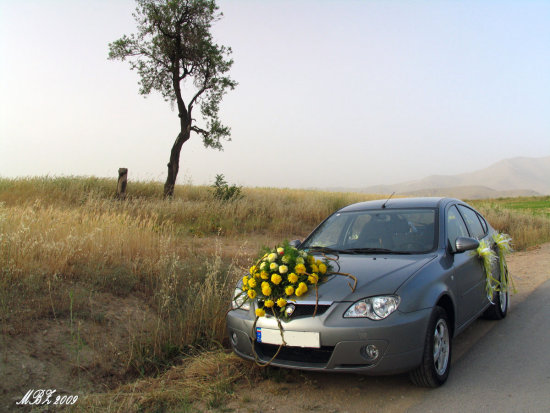 iran car wedding