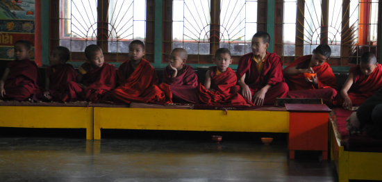 india ralang monastry children monk
