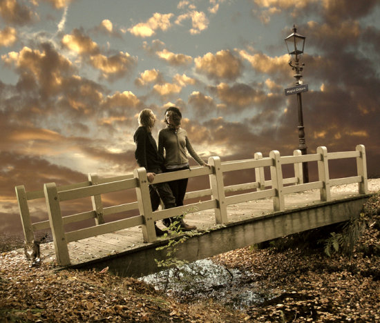 bridge photomontage cat love sunset