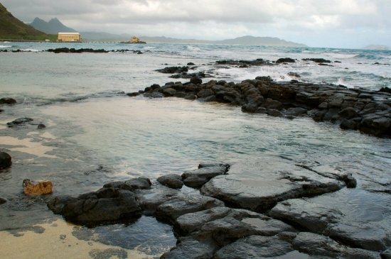 hawaii tidepool beach