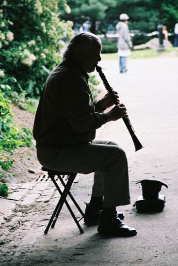 scenery trees tree park NY 2006 male man music black white people