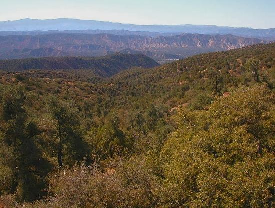 View southwest from Cerro Noroeste Road overlooking the upper Cuyama Valley, Sierra Madre, San Ra...