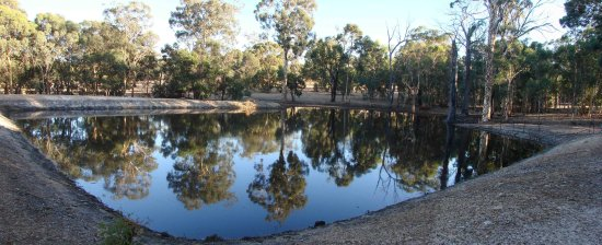 reflectionthursday early morning stitched farm dam dry state perth littleollie
