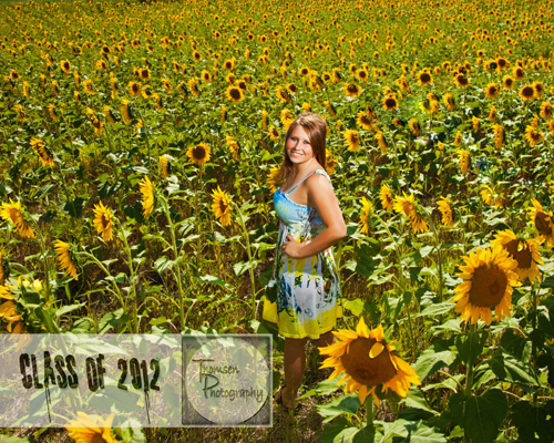 girl sunflowers