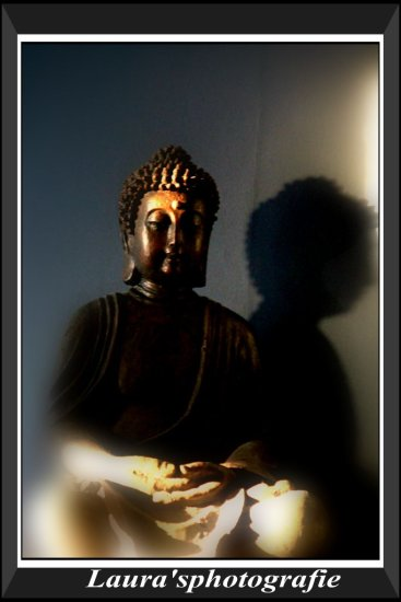Budha sun light