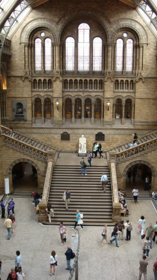 Maju natural history museum london england architecture stairs