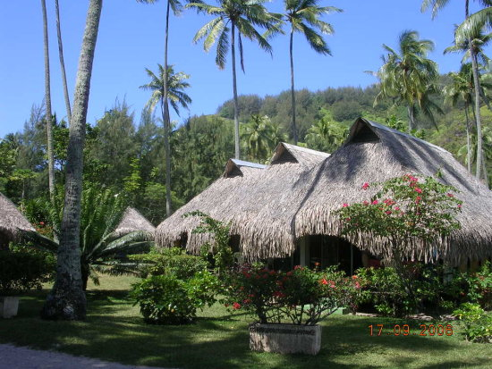 Weekend Bungalows in Papetoai Moorea