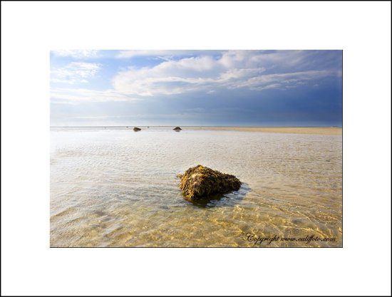 skaket beach Low tide Cape cod Stones color Nature ocean
