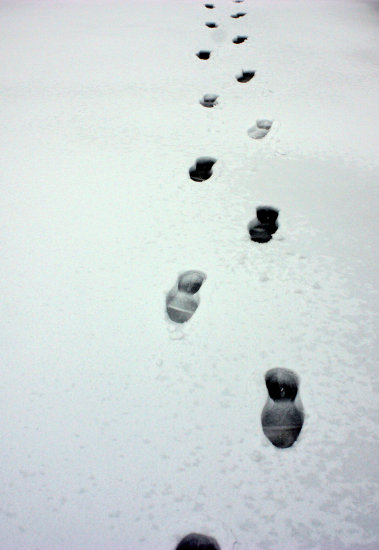 snow step tracks