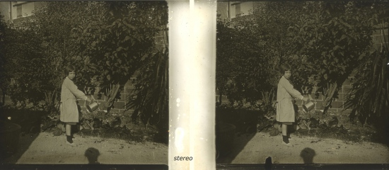 water watering boy 1900 antique blouse stereo photo old garden black white