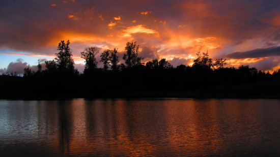 ShutterlySpectacularPhotography Sunset Reflection ChehalisRiver WA