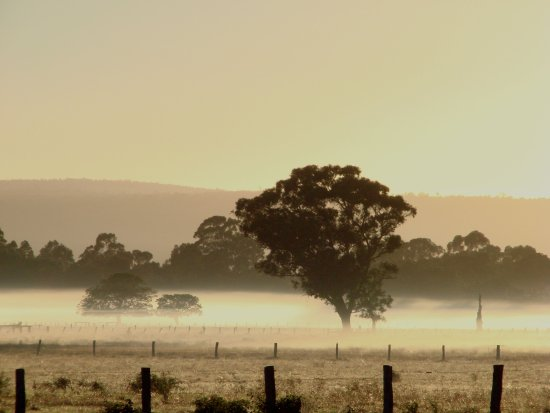fog cool morning sunrise perth littleollie