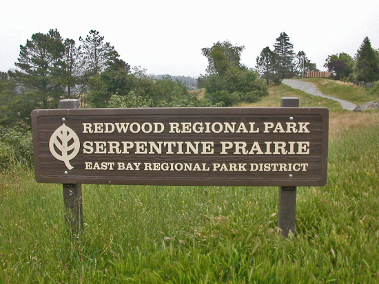oakland park serpentine nature sign trailsignfph serpentinefph