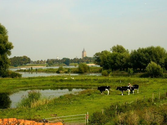 netherlands merwede water view landscape nethx merwx waten viewn landn