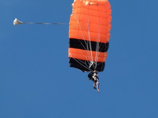 skydive paraglider sport men man high