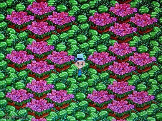Farmville Play Kent Kalitta Sweden Skane Pink Green Boy Farmer