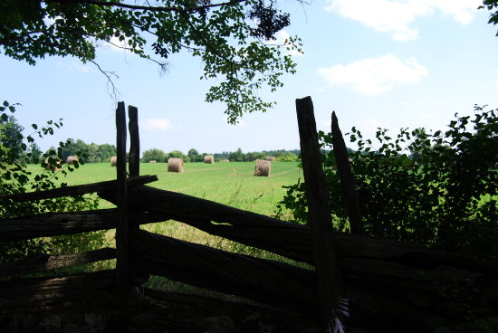 landscape old fences corn hay