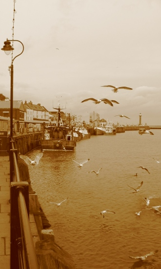 sepia whitby seascape birds