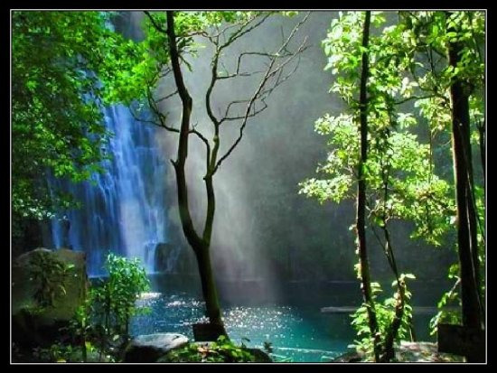 waterfalls nature Philippines