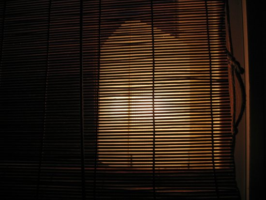 through the blinds