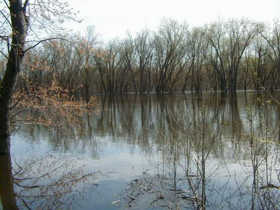 river water reflection wisconsin flood