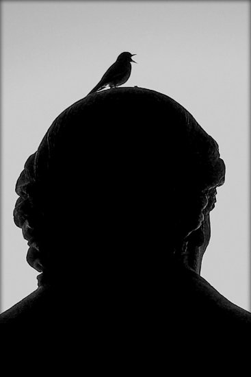 bird silhouette statue sanfrancisco