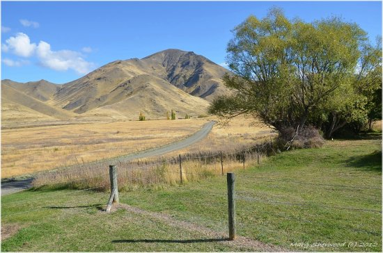 Molesworth Station, Marlborough, NZ.