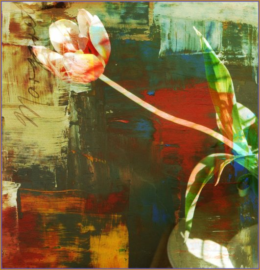 digitalartclub tulip