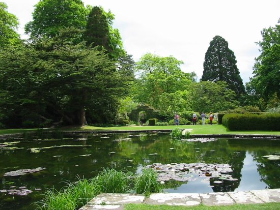 lily pond bodnant gardens nationaltrust