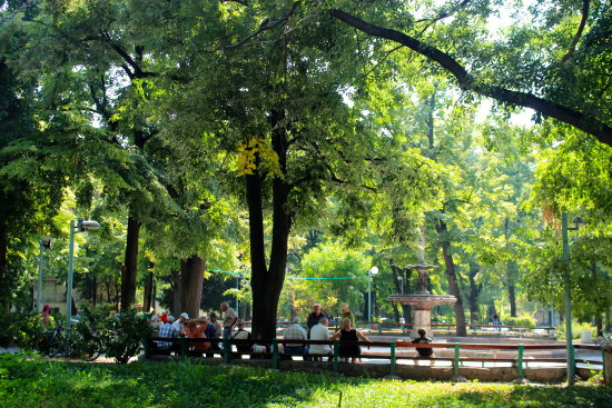 plovdiv park bulgaria green beauty petzka people